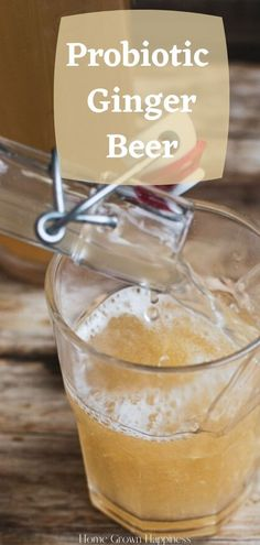 Healthy Soda, Healthy Juice Recipes, Healthy Juices, Healthy Drinks, Ginger Soda, Ginger Bug, Ginger Drink, Drinks With Ginger Beer, Homemade Ginger Beer
