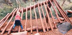 John Forrest National Park Nature Playground, Hovea - Buggybuddys guide for families in Perth Picnic Spot, Picnic Area, Winter Light Festival, Little Land, Timber Staircase, Log Fires, Family Days Out, Outdoor Learning, Perth