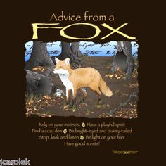 Advice From a Fox T-shirt Unisex S-M-L-XL-2XL New with Tags Forest Animals Fun