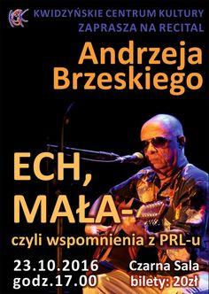 Koncert Andrzeja Brzeskiego, 23.10.2016 r.