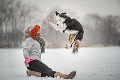 Border Collie Trick Dog | by Alicja Zmysłowska Photography