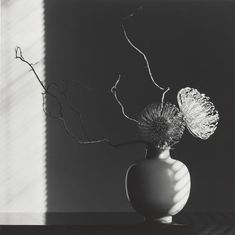 Flower Arrangement, 1986, by Robert Mapplethorpe. Gelatin silver print Image: 49 x 49 cm (19 5/16 x 19 5/16 in.) Promised Gift of The Robert Mapplethorpe Foundation to the J. Paul Getty Trust and the Los Angeles County Museum of Art, L.2012.89.566 © Robert Mapplethorpe Foundation