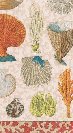 Caspari Coastal Curiosities Marine Life Printed 3-Ply Paper Guest Hand Towels Wholesale 13840G