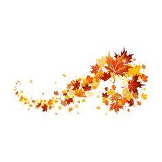 YakimenkoInna1970 — альбом «КЛИПАРТ- ПРИРОДА / природа-осень» на... ❤ liked on Polyvore featuring autumn, fall, flowers and filler