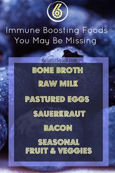 6 Immune Boosting Foods You May Be Missing - Holistic Squid