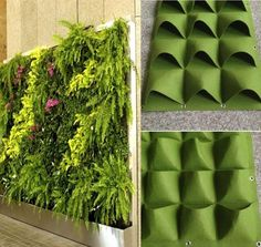 Details about Pockets Outdoor Indoor Wall Herbs Vertical Garden Hanging Planter Bag Green Cover up an ugly fence or create a stunning living wall. Fantastic way to brighten your indoor or outdoor walls and fences with greenery,flowers,herbs and vegeta Jardin Vertical Diy, Vertical Garden Wall, Vertical Gardens, Vertical Planter, Wall Garden Indoor, Herb Wall, Garden Planter Boxes, Planter Pots, Planter Ideas