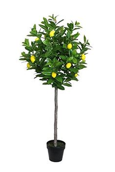 57' Decorative Potted Artificial Green and Yellow Lemon Tree in a Black Pot * For more information, visit image link.