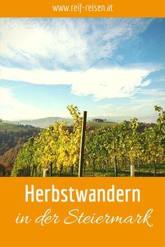 Durch Wälder und Weinberge, vorbei an besonderen Genussplätzen Blog, Painting, Wine Vineyards, Gap Year, Hiking, Woodland Forest, Destinations, Autumn, Viajes