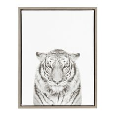 Kate and Laurel Sylvie Tiger Black and White Portrait Framed Canvas Wall Art by Simon Te Tai