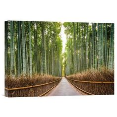 12 Best Kunst Images On Pinterest Bamboo Beautiful Flowers And Botany