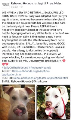 3/19/17 NYCACC SURVIVOR FROM 2012 SALLY, NEEDS A NEW HOME!! PLEASE SHARE TO HELP! /ij https://m.facebook.com/story.php?story_fbid=1242694892433010&id=155239384511905&__tn__=%2As