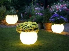Lights On Pinterest Glow Planters And Solar