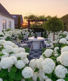 Summer weather is coming back this weekend. ☀️ Wish you all a lovely weekend with my favorite summer post from the Hydrangea garden. Amazing Gardens, Beautiful Gardens, Beautiful Flowers, Hello Beautiful, Hydrangea Season, Dream Garden, Home And Garden, Landscape Design, Garden Design