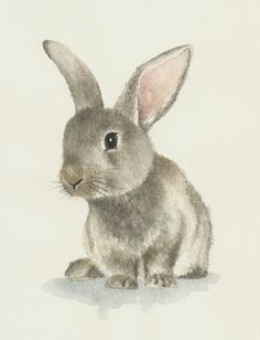 Rabbit watercolor original bunny painting by Ddrawings on Etsy