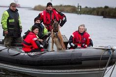 Speurhonden vinden lang vermiste mensen  Klik op de link voor het hele item   http://www.eenvandaag.nl/binnenland/53858/honden_zoeken_water_af_naar_vermiste_mensen?autoplay=1