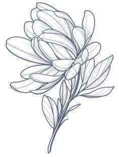 Love Tattoos, Beautiful Tattoos, Tattoo Sketches, Tattoo Drawings, City Flowers, Family Tattoo Designs, Flower Drawing Tutorials, Blue Tattoo, Botanical Tattoo