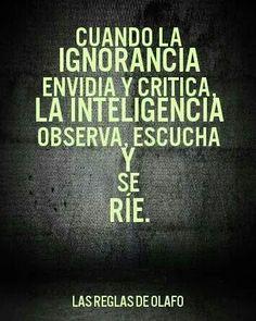 Cuando la ignorancia envidia y critica, la inteligencia observa, escucha y se ríe.