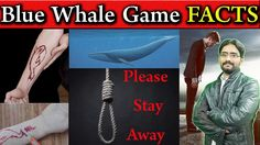 Blue Whale Facts Game Task | What is Blue Whale Game Suicide Challenge |...