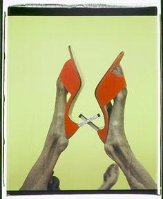 William Wegman, X, 1999  #fashion