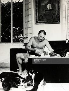 circa 1940's, Author Ernest Hemingway pictured at breakfast with a group of cats feeding at his feet, Ernest Hemingway, (1899-1961) US writer of novels and short stories and Nobel Prize winner, was also a keen sportsman, He was prone to a melancholic, self destructive personality