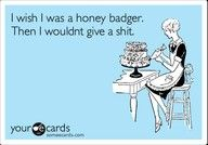 watch the honey badger vid on youtube HILARIOUS!