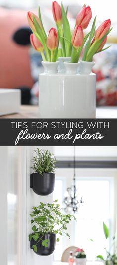 Tips for Styling Flowers and Plants - home decor plants and flowers - how to arrange flowers.