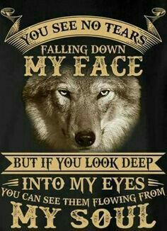A wolf is strength is a pack and the pack is strong by the wolf. Your pack can make you stronger or weak. But know that Lone Wolf survives. Wolf Qoutes, Lone Wolf Quotes, Wolf Stuff, Wolf Wallpaper, Warrior Quotes, Wolf Love, Wolf Pictures, She Wolf, Beautiful Wolves