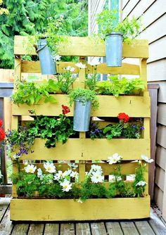 In summers, bright colors in the garden of the house look best. Can you see the look that this yellow wood is providing the picture, first the wood has been made and then flowers of different colors are placed in it along with water kettles.