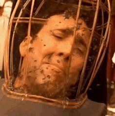 Nicolas Cage hates bees.