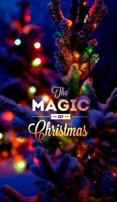 Merry Christmas Quotes Merry Christmas Quilt Along and Merry Christmas You Uss and ~ madaboutcable Christmas Eve Quotes, Christmas Mood, Merry Christmas And Happy New Year, Christmas Pictures, Christmas Themes, Christmas Phone Wallpaper, Winter Wallpaper, Holiday Wallpaper, Christmas Powerpoint Template