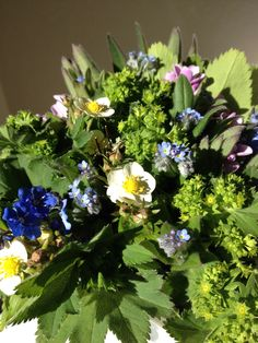Wild flowers - May.