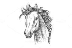 Mare horse sketch. $6.00