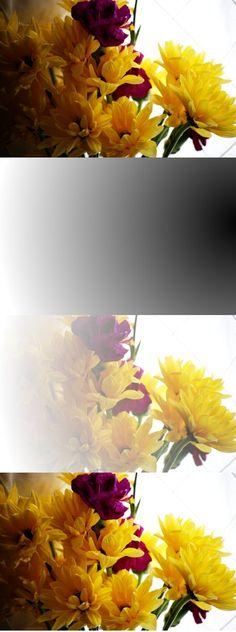 GIMP Tutorials: Fixing Shadows