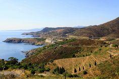 Banyuls-sur-mer - Le long de la côte Vermeille, faites escale à Banyuls-sur-Mer, là où le massif des Albères se jette dans la mer Méditerranée. Réputé pour sa douceur, le vin de Banyuls provient de vieilles vignes cultivées en terrasses sur ses fameux coteaux pentus.