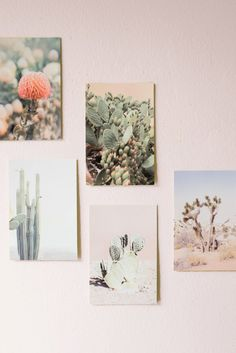 Turn your home into a dreamy desert.