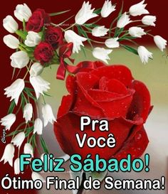 Good Morning, Happy Weekend, Good Night, Quotes Love, Bom Dia, Messages, Amigos, Biblia, Flowers