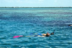 The Best Snorkeling In Florida Gulf