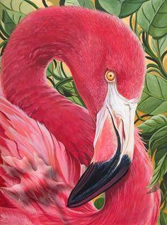 Pink Flamingo by Black Leaf Studio Flamingo Painting, Flamingo Art, Pink Flamingos, Flamingo Outfit, Flamingo Photo, Pretty Birds, Beautiful Birds, Animals Beautiful, Cute Animals