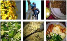 Kodin Kuvalehti – Blogit | Puikkopotut ja kuppisoosi Penne, Vegetarian Food, Vegetarian Cooking, Vegan Food, Vegetarian Meals, Pens, Veggie Food, Vegetarian Wedding Food