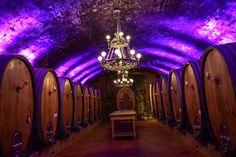Genussreisetipps für Franken - Wein erleben im Winzerkeller Sommerach  ... #genussreisetipps #wein #franken