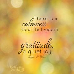 There is a calmness to a life lived in Gratitude ~ a quiet Joy ~~❤~~ Affirmations Louise Hay, Affirmations Positives, Inspirational Thoughts, Positive Thoughts, Positive Quotes, Daily Thoughts, Inspiring Quotes, Motivation Positive, Libros