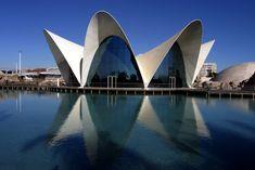 El Oceanográfico, Ciudad de las Artes y las Ciencias, Valencia, España - Félix Candela