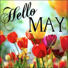Hello May Quotes | Hello May! Fifty Six years of WEDDED BLISS! LOL, :) ♥