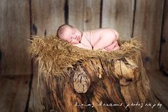 SALE - Camel Faux Fur Photography Prop - Soft, Cozy, Cuddly Faux Fur Nest - Perfect Newborn Photography Prop - Plush Long Pile. $21.99, via Etsy.