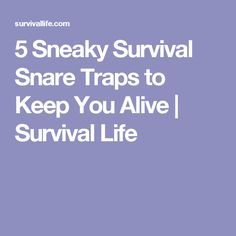 5 Sneaky Survival Snare Traps to Keep You Alive | Survival Life