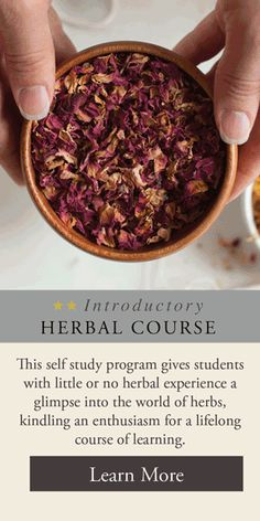ake a lot of fresh herbs to dry and become tea, the slow experience of harvesting and using herbs Soap Making Supplies, Homemade Soap Recipes, Recipe Instructions, Home Made Soap, Cream Recipes, Fresh Herbs, Herbal Remedies, Herbalism, Food