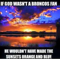 Denver Broncos - and a Bears Fan ; Broncos Memes, Broncos Gear, Go Broncos, Broncos Fans, Football Memes, Football Season, Nfl Memes, Boise State Football, Boise State University
