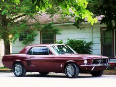 1967 Mustang! Miss my daddy's mustang.