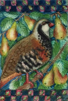 A Partridge in a Pear Tree from Twelve Days of Christmas