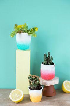 DIY ombre plant pot